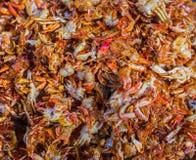 Fried Soft Shell Crab in Ho Chi Minh City Immagine Stock Libera da Diritti