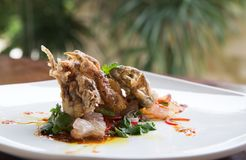 Soft shell crab fried tempura. sea food Royalty Free Stock Photography