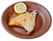 Fried sole fish on brown plate Royalty Free Stock Image