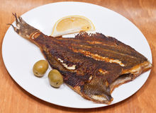 Fried sole fish on white plate Royalty Free Stock Images