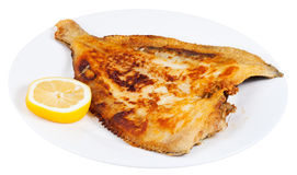 Fried sole fish on white plate Stock Photo