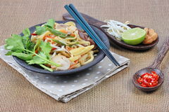 Fried sour sweet  Chinese noodle with tofu with side dish are Thai organic food. Selective focus. Royalty Free Stock Photography