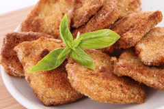 Fried Soy Meat Royalty Free Stock Photos