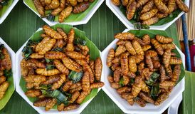 Fried spicy worm in banana leaf, snack in thailand Royalty Free Stock Photo
