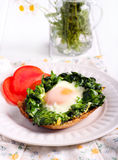 Fried spinach and an egg Stock Images