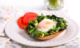 Fried spinach and an egg Royalty Free Stock Photo
