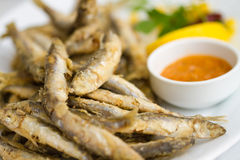 Fried sprat with souce Stock Photography