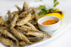 Fried sprat with souce Stock Photos