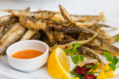 Fried sprat with souce Stock Image