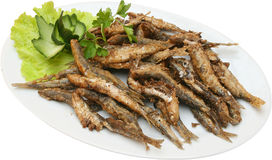Fried sprats with lettuce Stock Photos