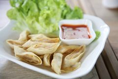 Fried Spring Roll also known as Egg Roll. In close up stock image