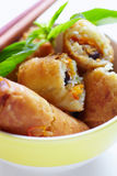 Fried spring roll b Stock Image