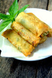 Fried Spring Roll stock photo