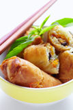Fried spring roll a Royalty Free Stock Photos