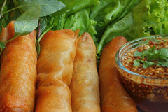 Fried spring roll pastry. Stock Images