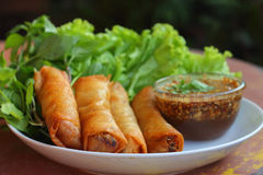 Fried spring roll pastry. Stock Photography