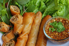 Fried spring roll pastry Stock Images
