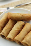 Fried spring rolls Royalty Free Stock Image