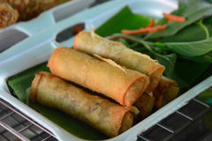Fried spring rolls. Fried Chinese Traditional Spring rolls food Royalty Free Stock Image