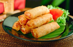 Fried Spring Rolls On Dish Royalty Free Stock Photography