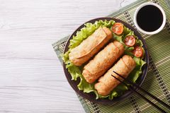 Fried spring rolls on a plate with salad, horizontal top view Stock Photos