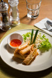 Fried spring rolls Stock Image
