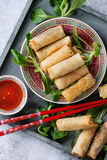 Fried spring rolls with sauce Royalty Free Stock Photo