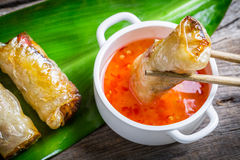 Fried spring rolls serves with sweet and sour sauce Royalty Free Stock Photos