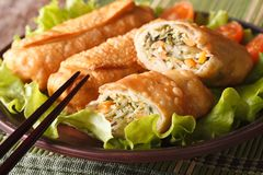 Fried spring rolls stuffed with vegetables close-up. Horizontal Stock Images