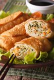Fried spring rolls stuffed with vegetables close-up. Vertical Royalty Free Stock Photos