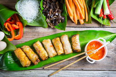 Fried spring rolls surrounded by ingredients Stock Photo