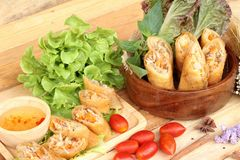 Fried spring rolls traditional for appetizer food. Stock Image