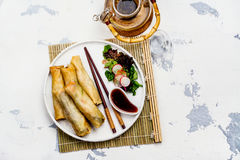 Fried spring rolls with vegetables, duck meat and noodle Stock Image