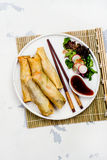 Fried spring rolls with vegetables, duck meat and noodle. On white stone table. Copy space. Top view royalty free stock photo
