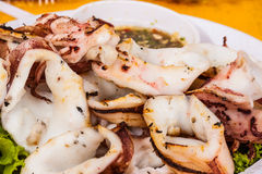 Fried squid Royalty Free Stock Image