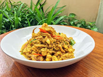 fried squid with curry power, Real traditional Thai food, One of Royalty Free Stock Photo