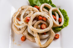 Fried squid ring Royalty Free Stock Photo