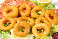 Fried squid rings. Deep fried battered squid rings, a Mediterranean appetizer Stock Image