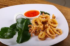 Fried squid rings. With hot spicy sauce stock image
