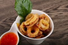 Fried squid rings. With hot spicy sauce stock images