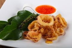 Fried squid rings. With hot spicy sauce royalty free stock photos