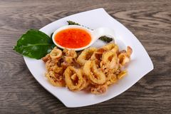 Fried squid rings. With hot spicy sauce stock photos