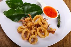 Fried squid rings. With hot spicy sauce stock photo