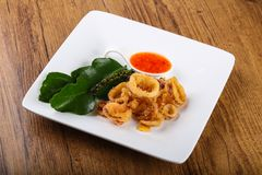 Fried squid rings. With hot spicy sauce royalty free stock photography