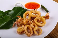 Fried squid rings. With hot spicy sauce royalty free stock image