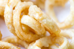Fried squid rings. Homemade Fried squid rings focus on the left Stock Photos