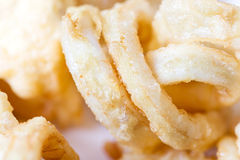 Fried squid rings. Homemade Fried squid rings - macro Royalty Free Stock Photography