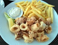 Fried squid with sauce and potatoes. And white sauce stock images