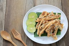 Fried squid of Thai seafoods in the white dish on wood floor. Fried squid of Thai seafoods in the white dish on wood floor and have wooden spoon for design in Royalty Free Stock Photo