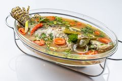 Fried Steamed Sea Perch i limefruktsoppas?s arkivfoto